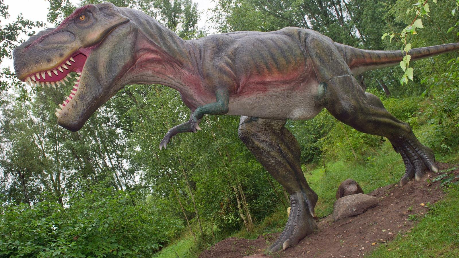 Flugsaurier Arten