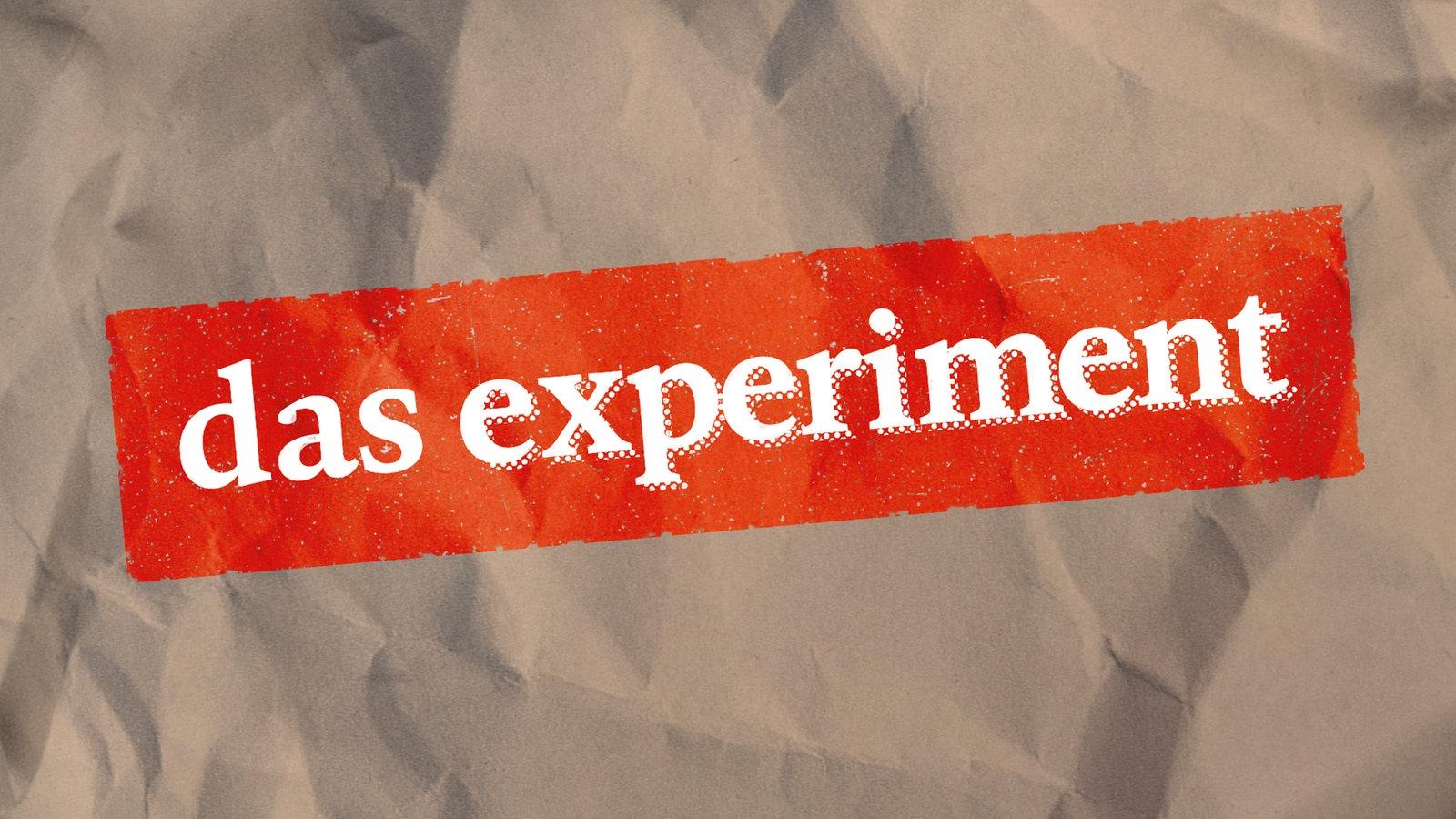 Das Experiment Wdr