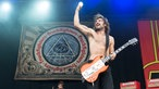 Truckfighters beim Serengeti Festival 2014