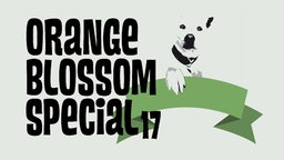 Logo Orange Blossom Special 17