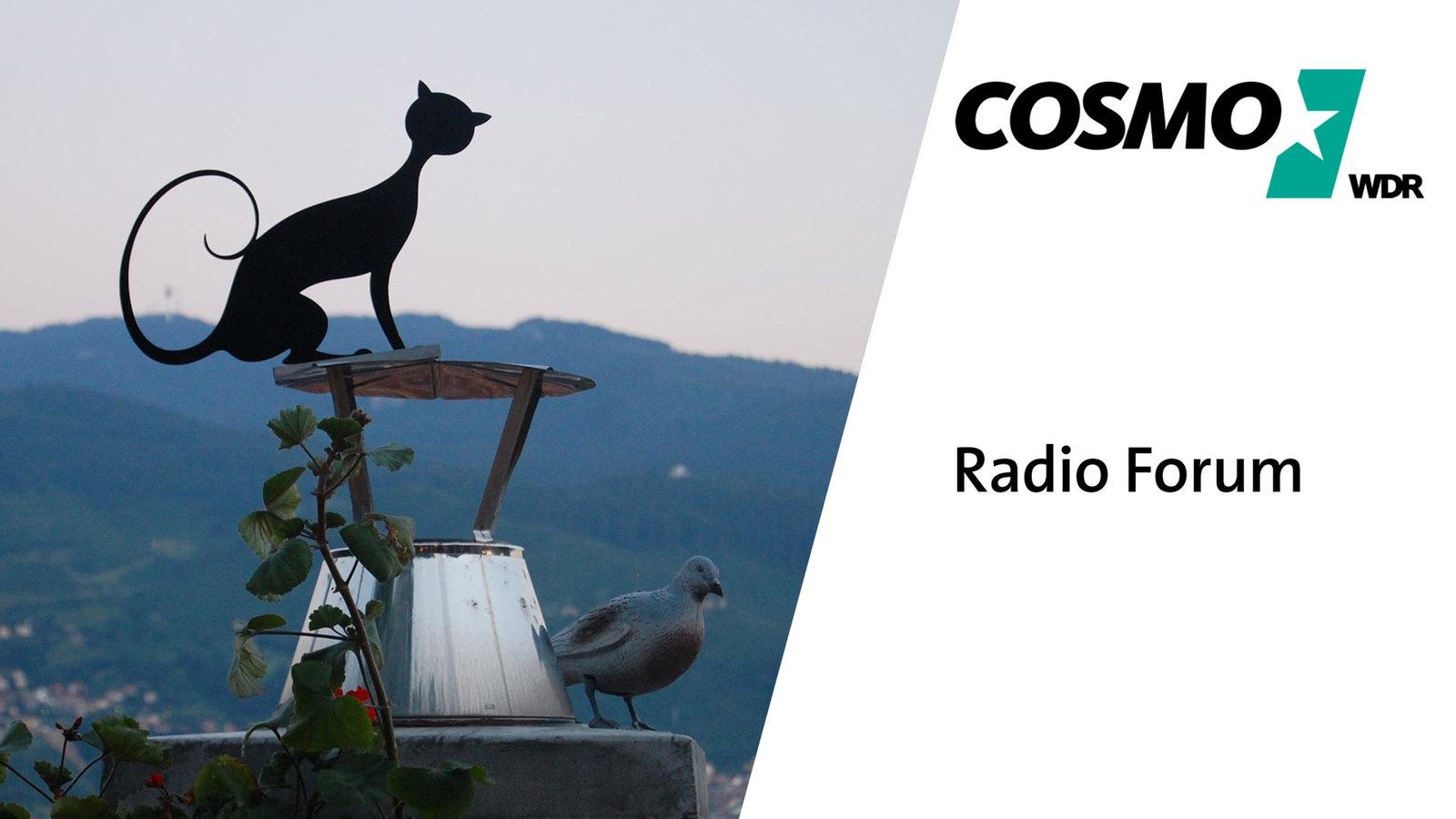 Zuverlässig Und Objektiv Cosmo Radio Forum Cosmo Audio