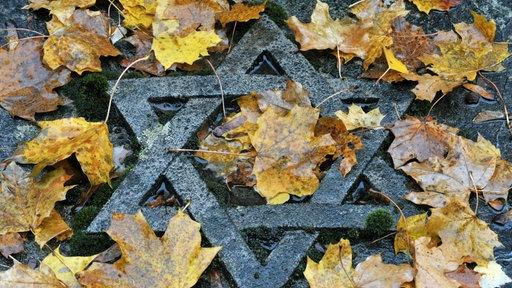 Ein steinerner Judenstern mit Herbstlaub bedeckt.