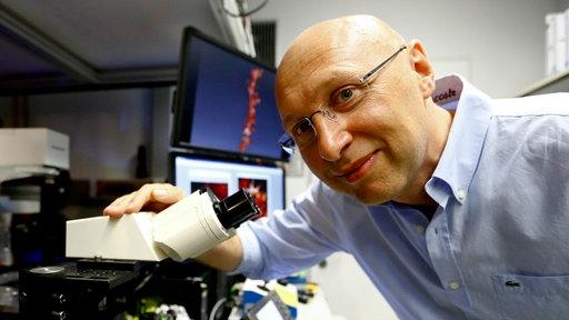 Stefan Hell, ein Mann mit Glatze und Brille, beugt sich lachend zu einer Mikroskopanlage herunter.