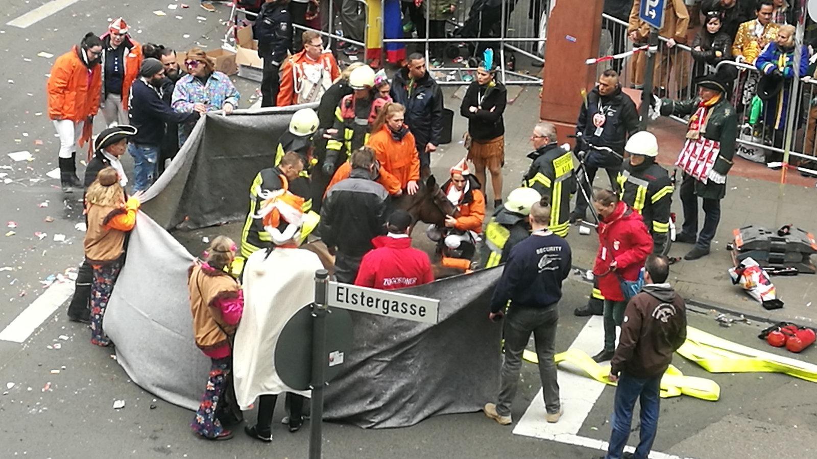 Pferde Unfall Köln