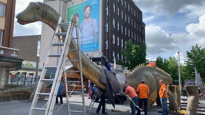 Dino City Bochum Karte.Lebensgroße Dinosaurier In Ganz Bochum Ausgestellt Ruhrgebiet