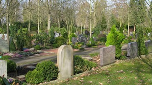Friedhof in Herbstsonne