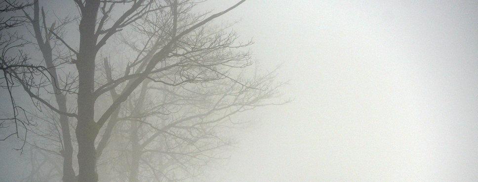 """Spaziergänger """"verschwinden"""" in Winterberg auf dem Kahlen Asten im Nebel."""