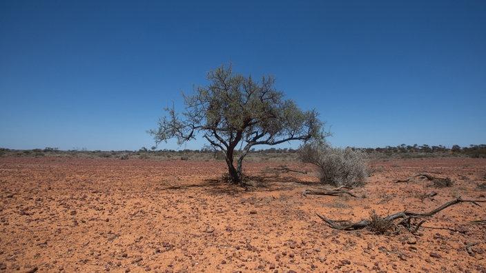 Land, das sich im Westen von Australien befindet