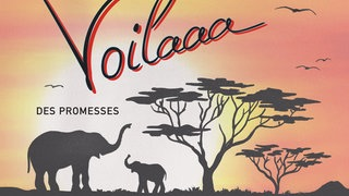 "Cover: Voilaaa  - ""Des Promesses"""