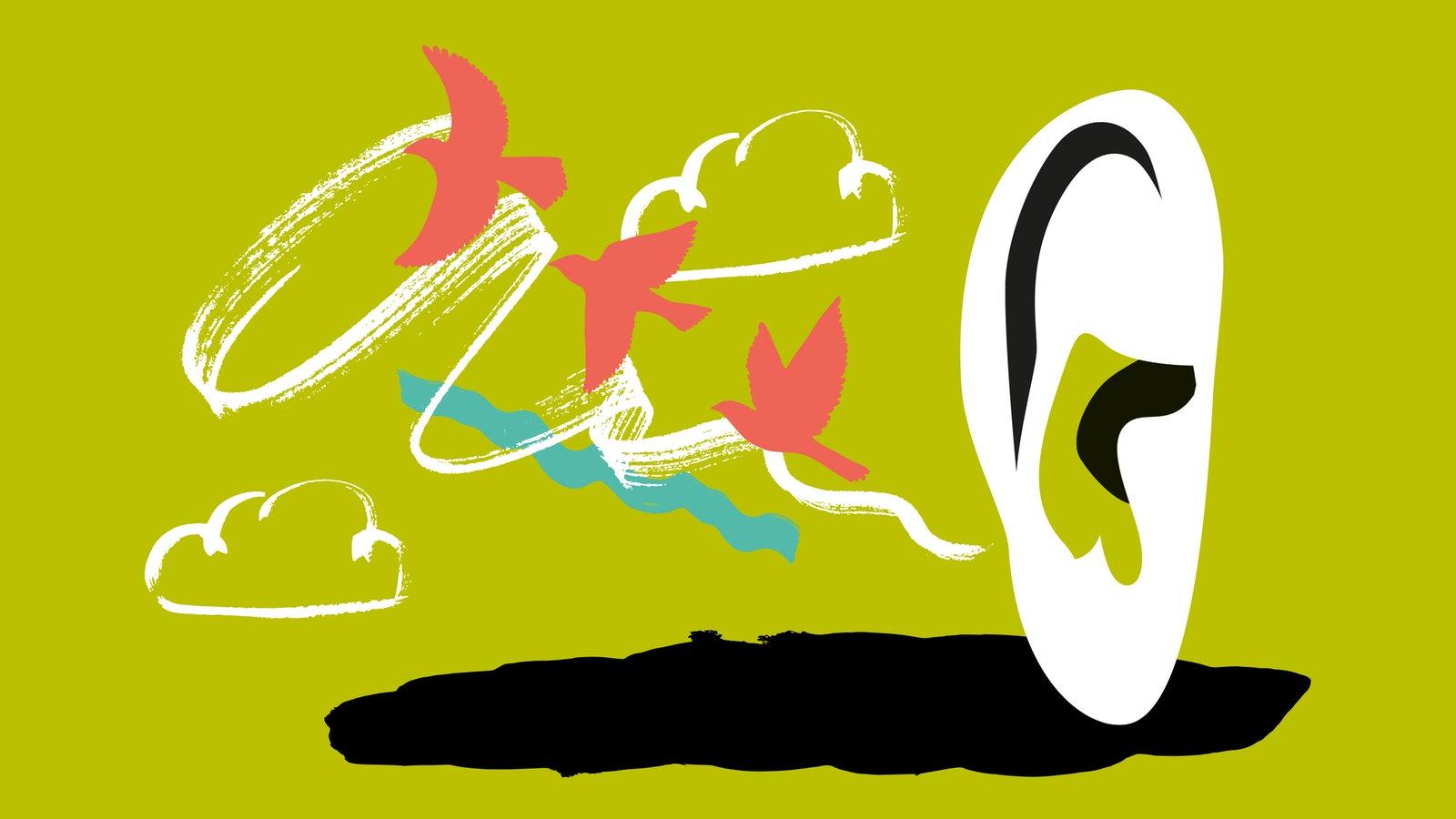 Wdr 3 Musikrätsel