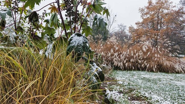 Wdr 4 Drinnen Und Draußen Wunderbare Wintergärten Wohnen