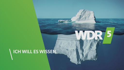 Wdr5 Live Stream