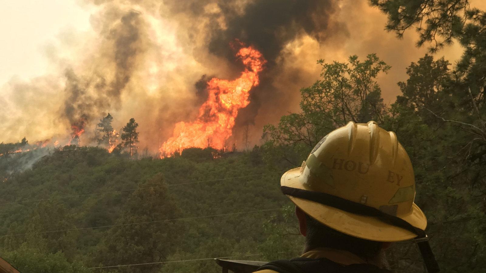 Audio leben mit den flammen feuer kologie wdr 5 for Mit 100 dingen leben