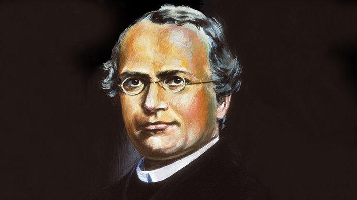 Gregor Mendel im Portrait