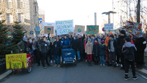 "Demonstration ""fridays for future"" (Leipzig, 18.01.2019)"