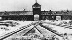 Tor des KZ Auschwitz-Birkenau