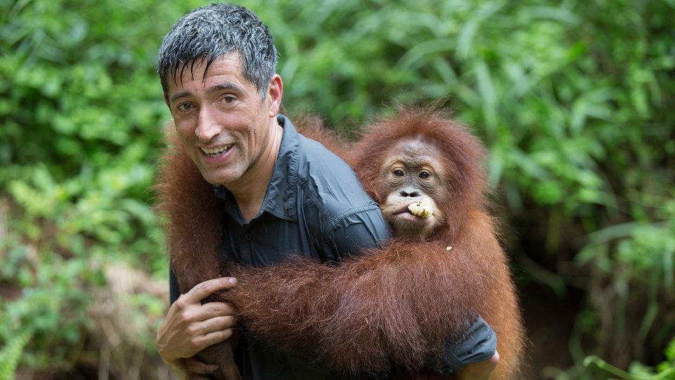 Mit Ranga Yogeshwar auf Sumatra – eine Quarks-Reportage ...