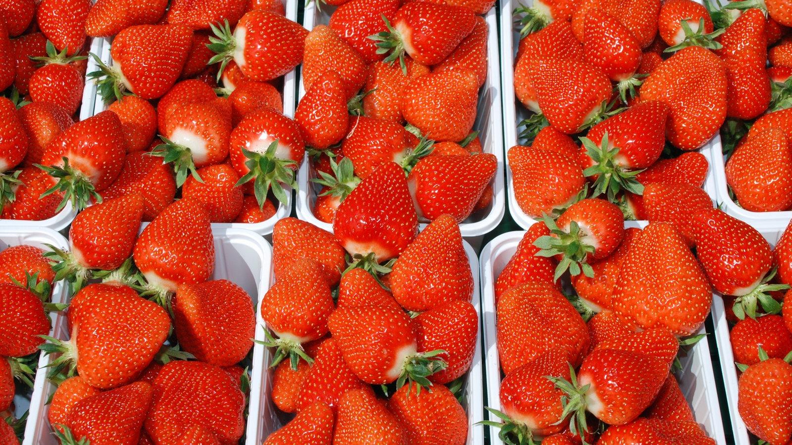 erdbeeren anbauen erdbeeren anbauen sunny7 erdbeeren. Black Bedroom Furniture Sets. Home Design Ideas