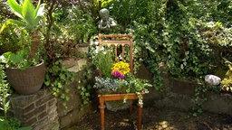 Gartenideen   Bepflanzter Stuhl