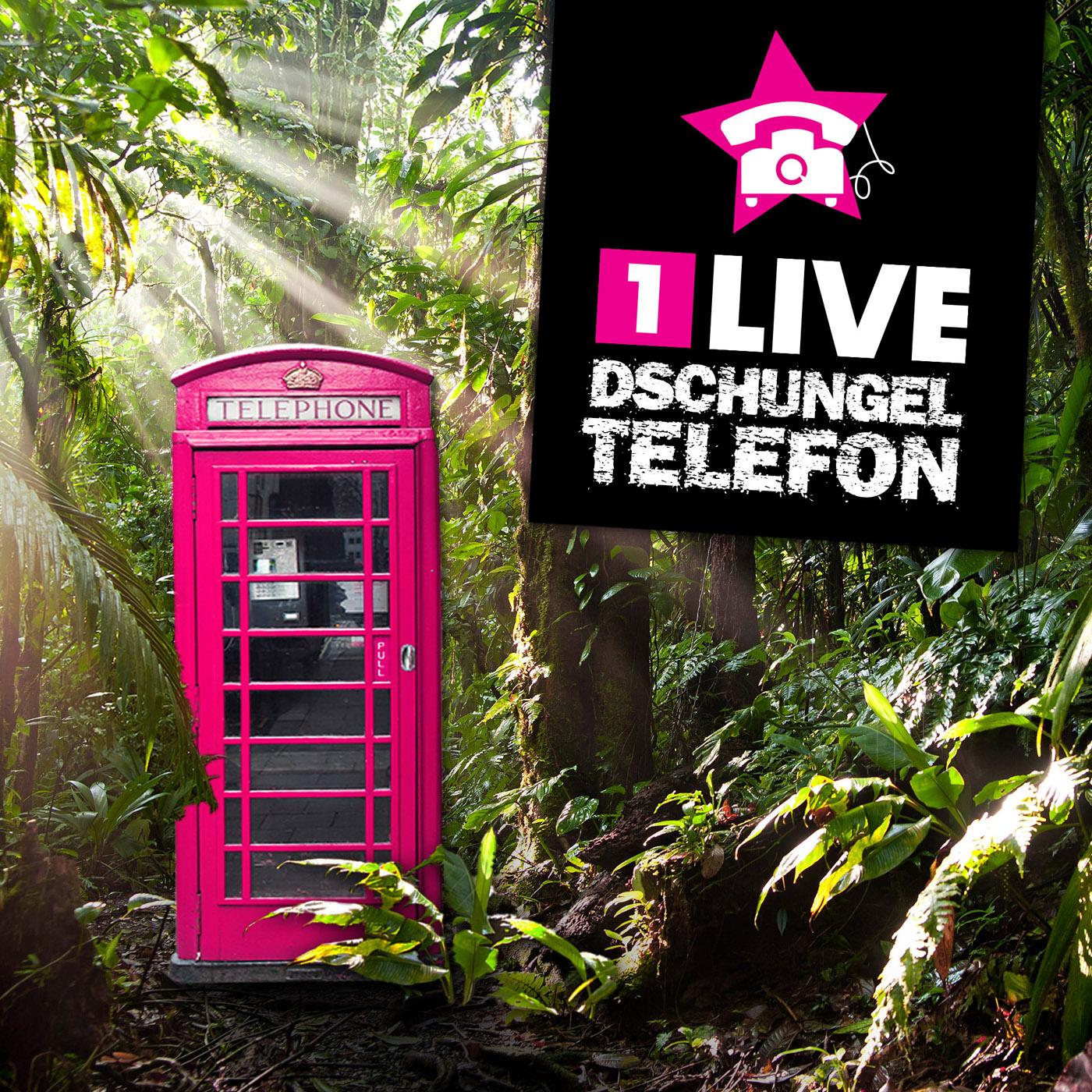 1LIVE Das Dschungeltelefon