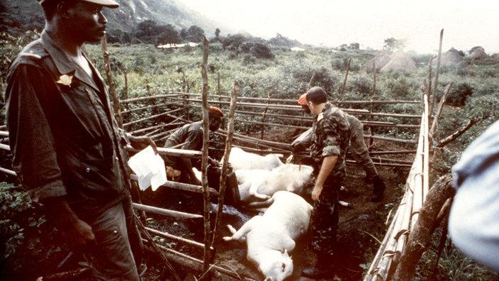 Kamerun 1986