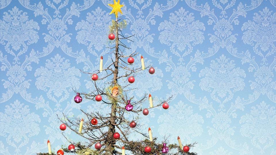 weihnachtsbaum178_v-ARDFotogalerie.jpg