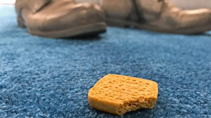 Fußboden Teppich Xl ~ Was man vom boden noch essen kann mensch wissen wdr