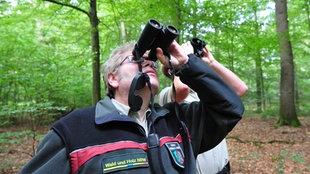 Lutz Falkenried und Heiner Heile blicken mit Ferngläsern in die Baumkronen